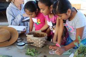 Santee Community Garden 1
