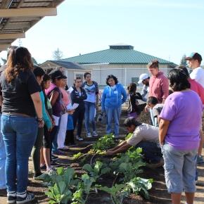 Santee Community Garden 3
